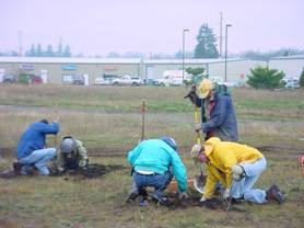 Volunteers salvaging native prairie plants before a parking lot is constructed.